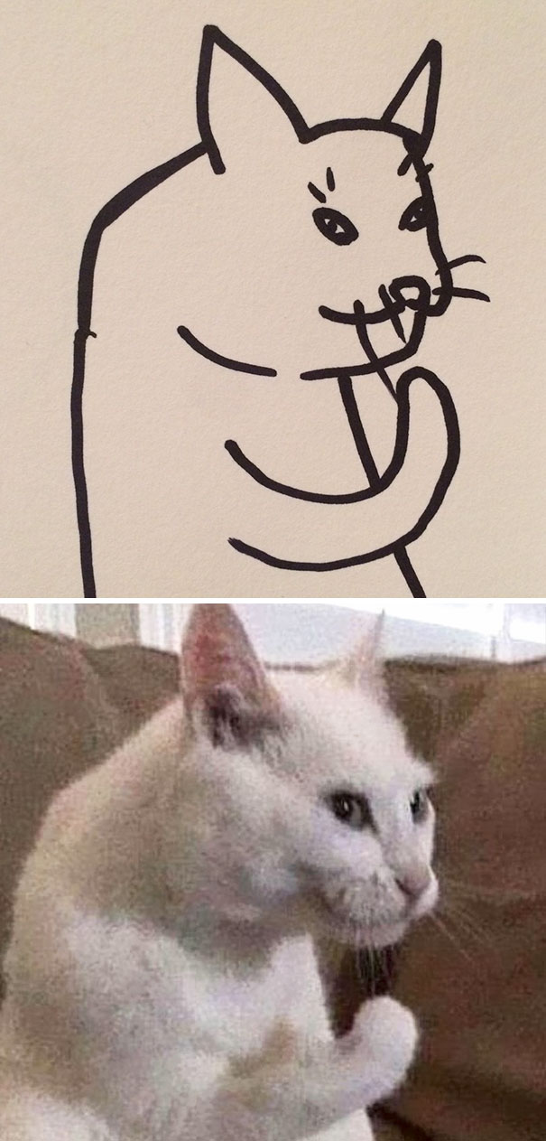 funny-poorly-drawn-cats-6-59705e6fb04c9_605.jpg