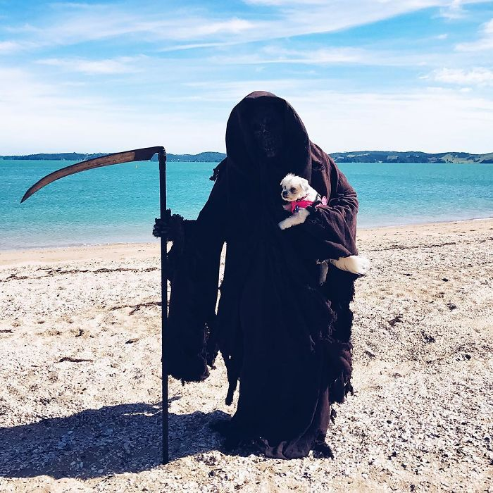grim-reaper-beach-instagram-photos-swimreaper-14-59f6e981a841a_700.jpg