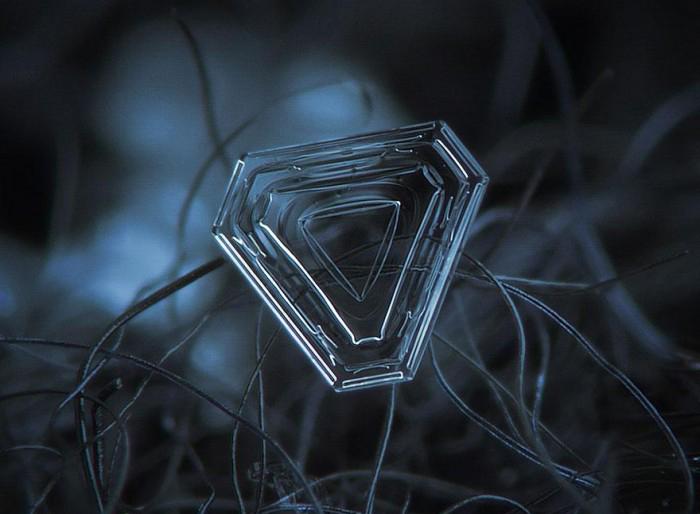 macro-photography-snowflakes-alexey-kljatov-3.jpg