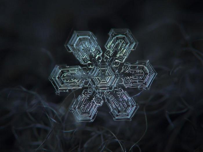macro-photography-snowflakes-alexey-kljatov-4.jpg