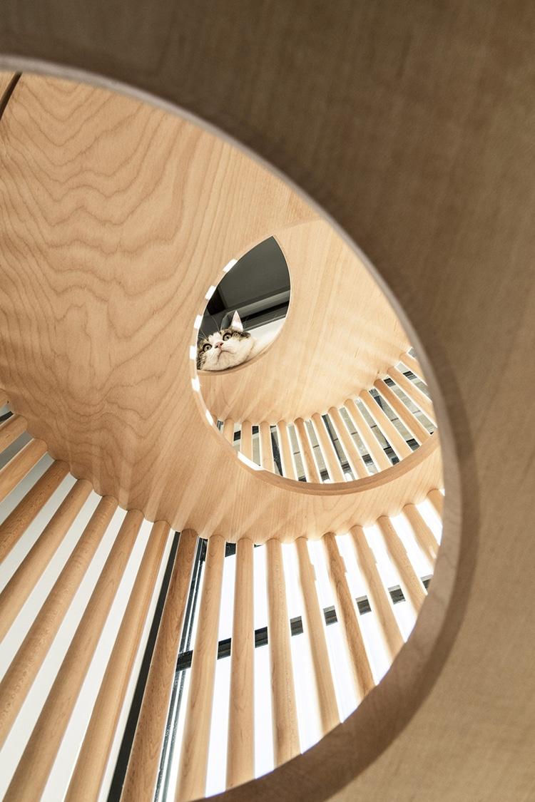minimalist-cat-furniture-rinn-4.jpg