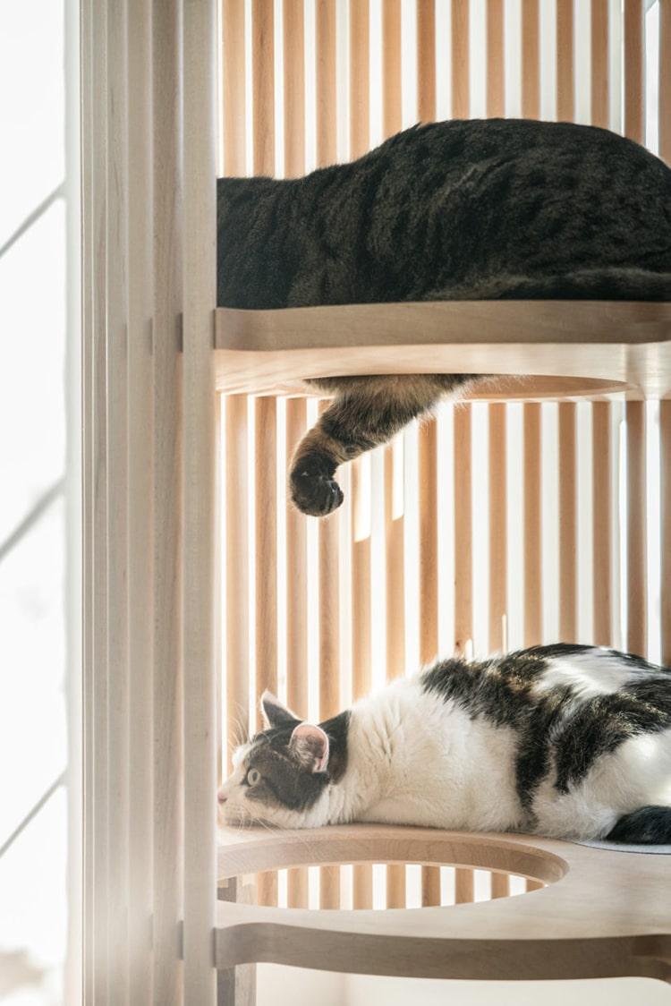 minimalist-cat-furniture-rinn-7.jpg