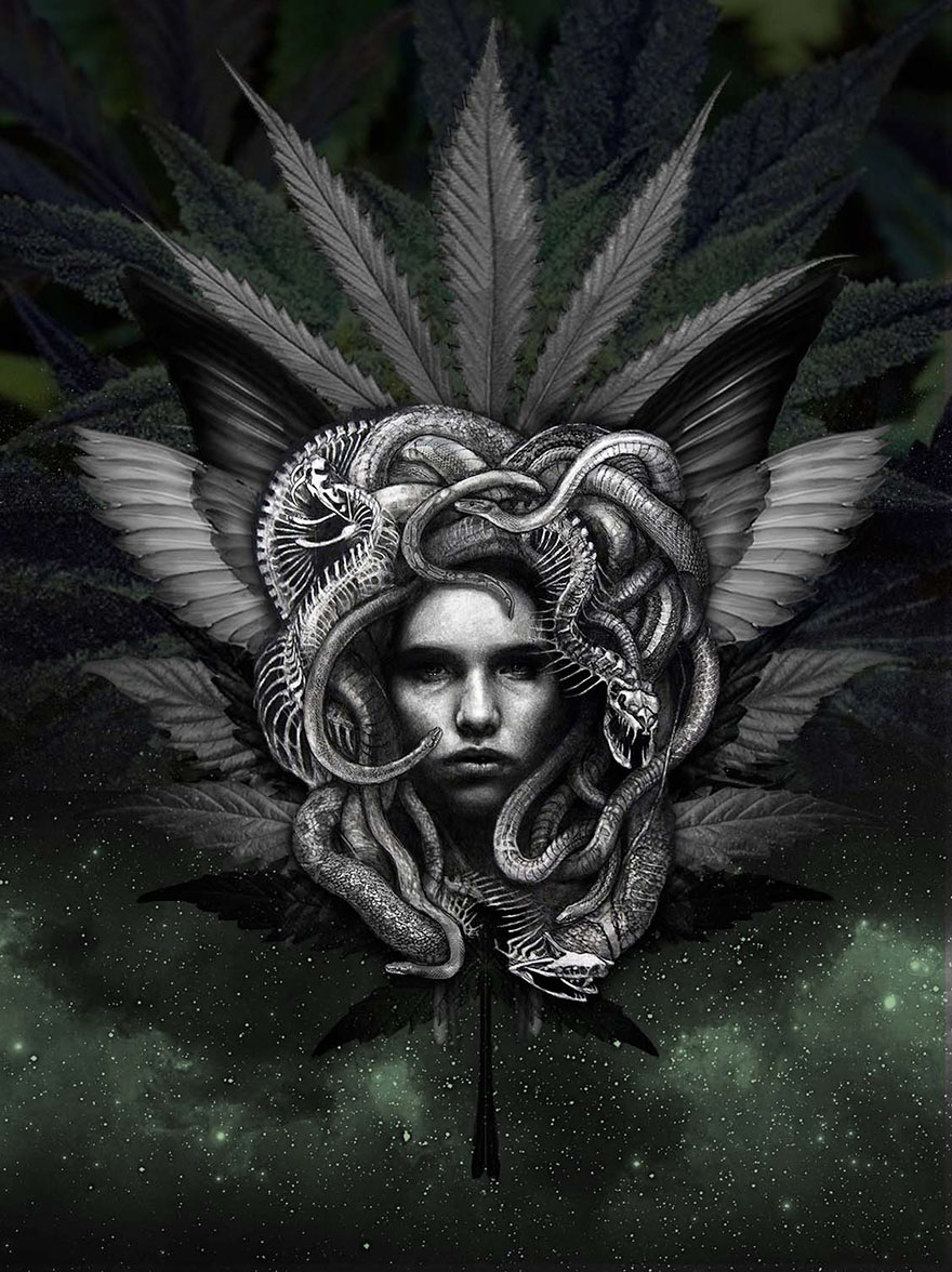 painting-high-art-festival-2018-natural-cannabis-company-58-1.jpg