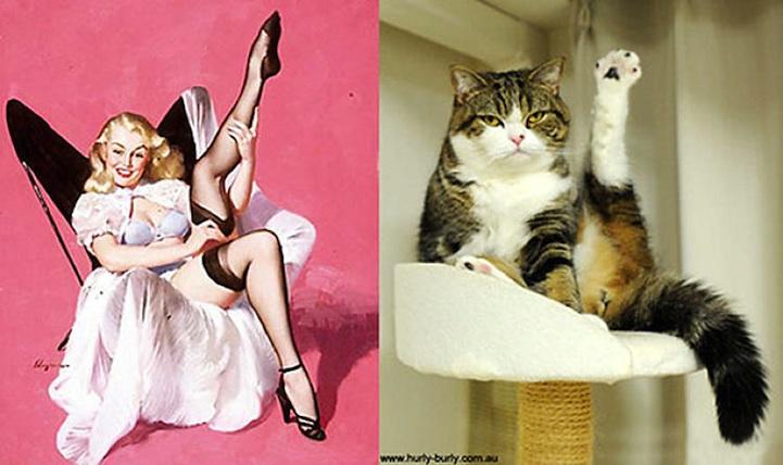 pinupcats02.jpg