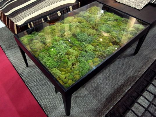 real-moss-tables-by-ayodhya-3.jpg