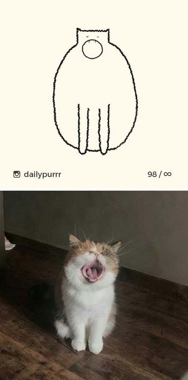stupid-cat-drawings-dailypurrr-10-5af017a8982d8_605.jpg