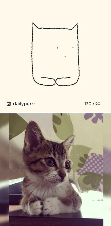 stupid-cat-drawings-dailypurrr-12-5af017ac0c917_605.jpg