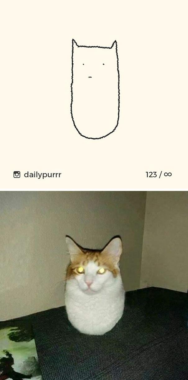 stupid-cat-drawings-dailypurrr-16-5af017b550f8b_605.jpg
