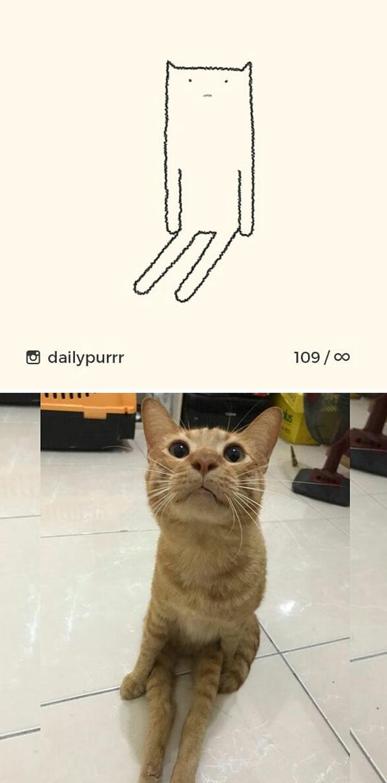 stupid-cat-drawings-dailypurrr-18-5af017b942c05_605.jpg