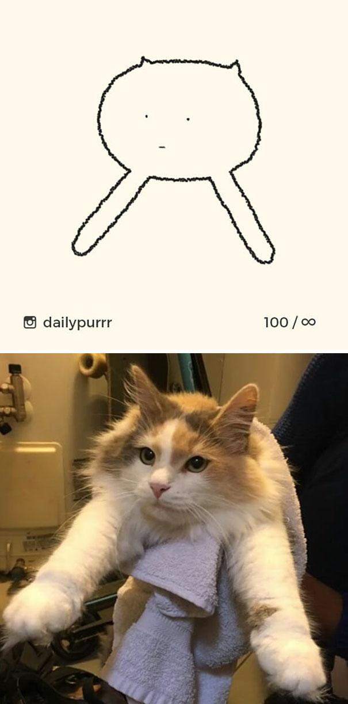 stupid-cat-drawings-dailypurrr-21-5af017bed8495_605.jpg