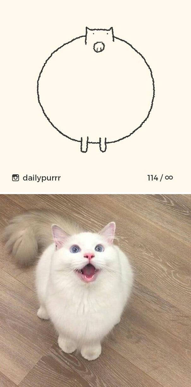 stupid-cat-drawings-dailypurrr-22-5af017c09d223_605.jpg