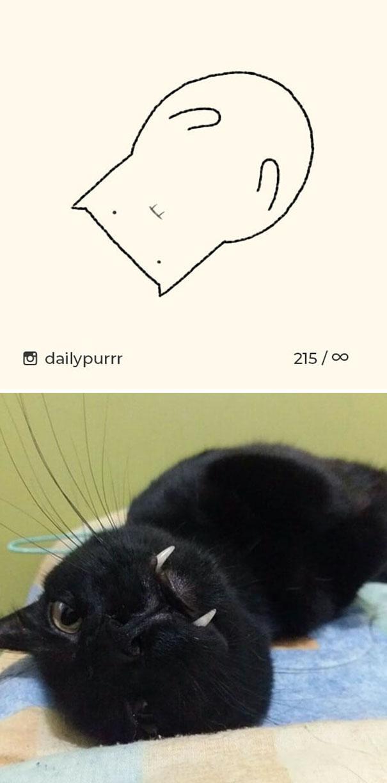 stupid-cat-drawings-dailypurrr-46-5af017f50fa67_605.jpg