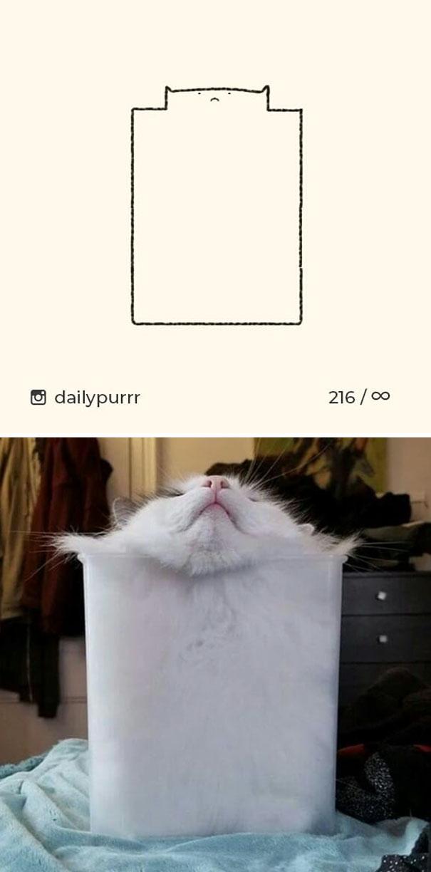 stupid-cat-drawings-dailypurrr-7-5af017a320f56_605.jpg
