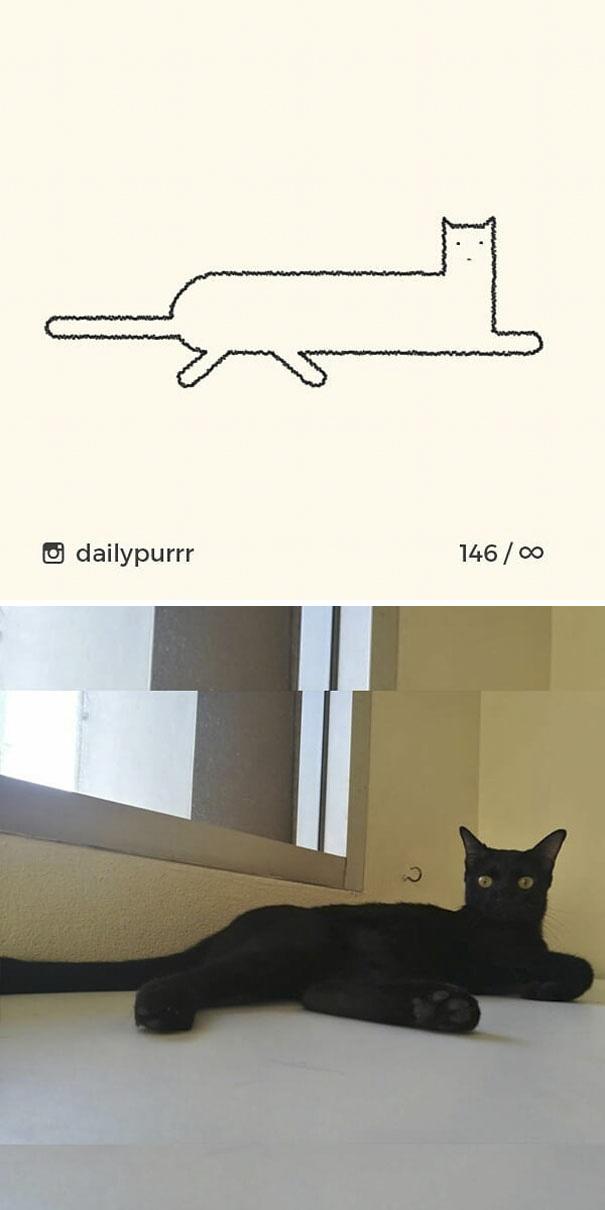 stupid-cat-drawings-dailypurrr-79-5af02170cbff7_605.jpg