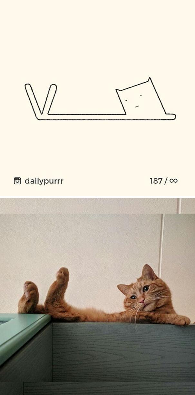 stupid-cat-drawings-dailypurrr-8-5af017a4e3184_605.jpg