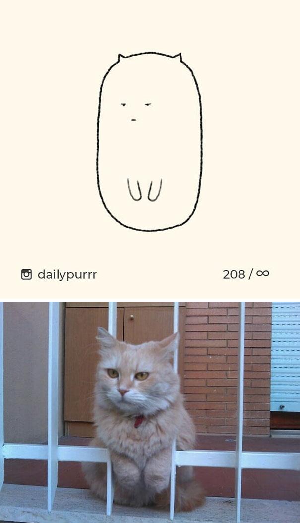 stupid-cat-drawings-dailypurrr-81-5af0184047e7e_605.jpg
