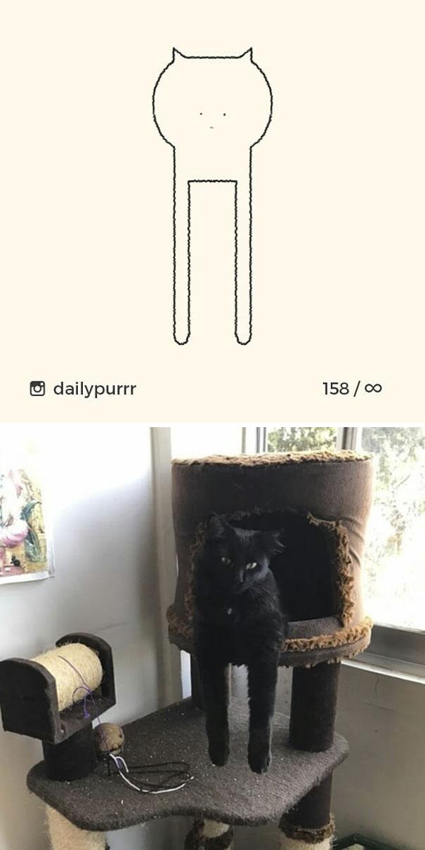 stupid-cat-drawings-dailypurrr-85-5af0184a41ffb_605.jpg