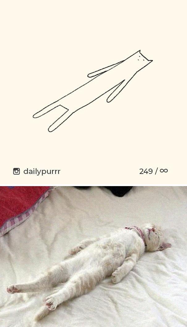 stupid-cat-drawings-dailypurrr-95-5af0185eb5c42_605.jpg