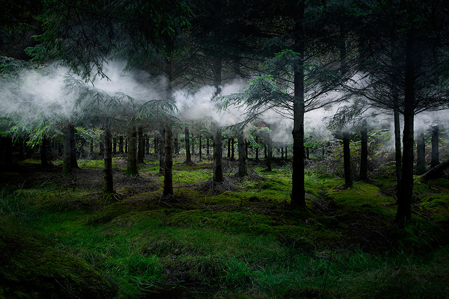 surreal-forest-photograhy-ellie-davis-13_880.jpg