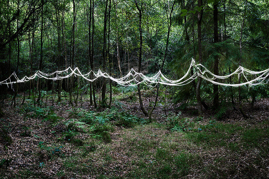 surreal-forest-photograhy-ellie-davis-18_880.jpg