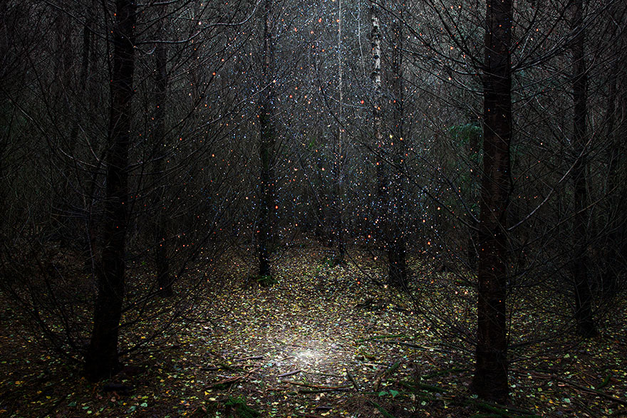 surreal-forest-photograhy-ellie-davis-1_880.jpg