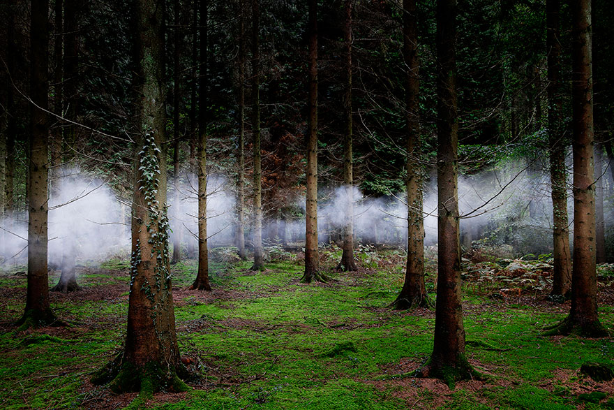 surreal-forest-photograhy-ellie-davis-2_880.jpg