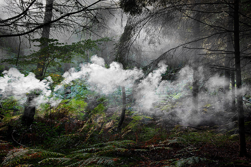 surreal-forest-photograhy-ellie-davis-9_880.jpg
