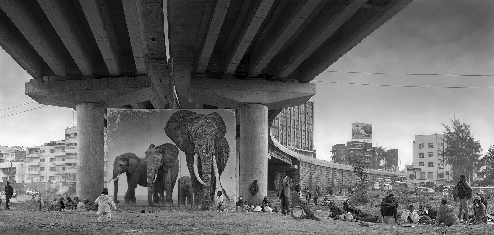 underpass-with-elephants-3800px.jpg