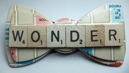 wonder-lee-upcycled-bowties-1.jpeg.492x0_q85_crop-smart.jpg