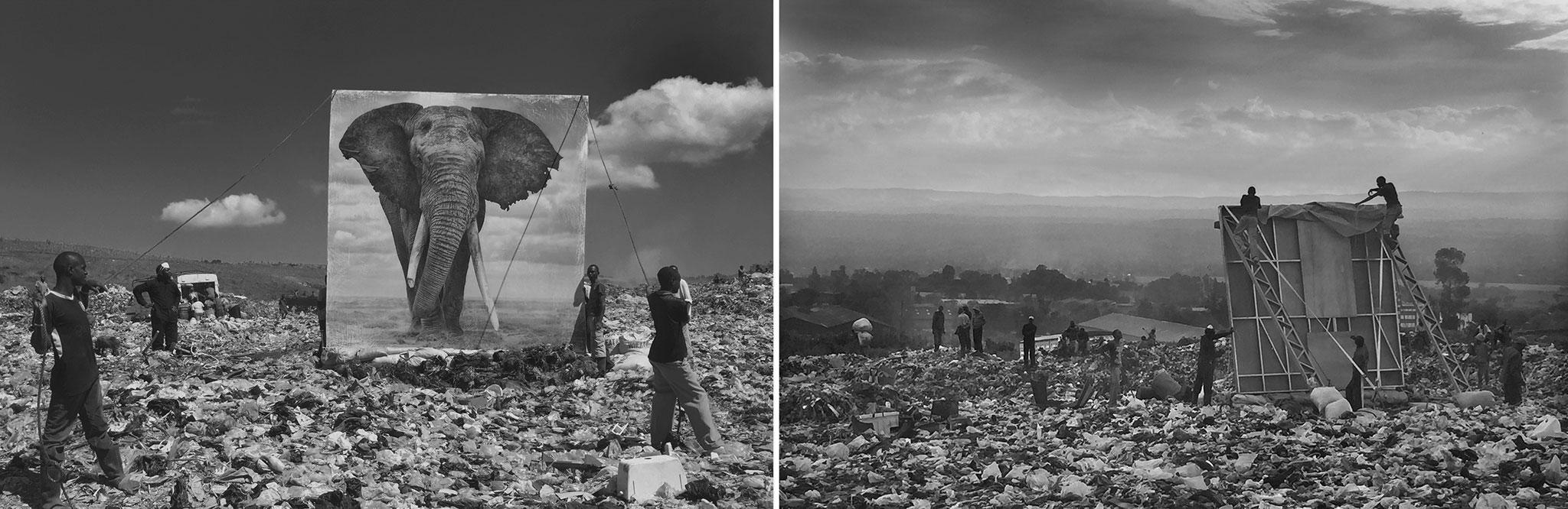x-inherit-the-dust-behind-the-scenes-elephant-panel-on-dumpsite-x2.jpg