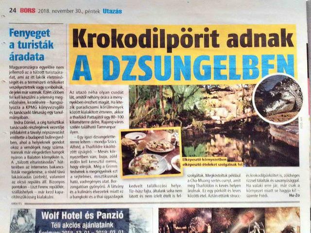 Krokodil pörit adnak a dzsungelben