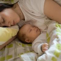 Anyaméhutánzó plüssök