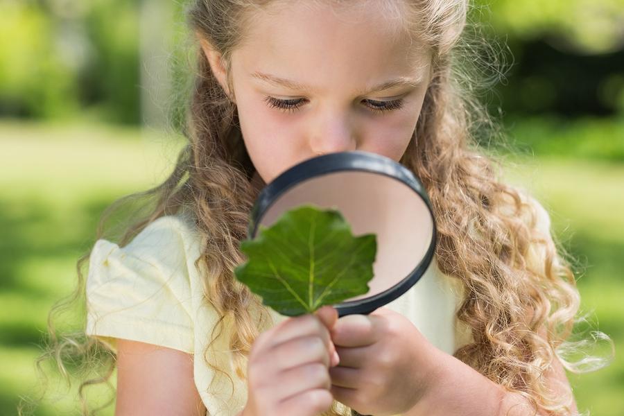 bigstock-young-girl-examining-a-leaf-wi-59722553.jpg