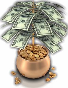 pénzfa
