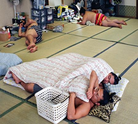 sumo-sleeping.png