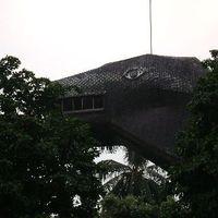 Szopóágon Jakartában