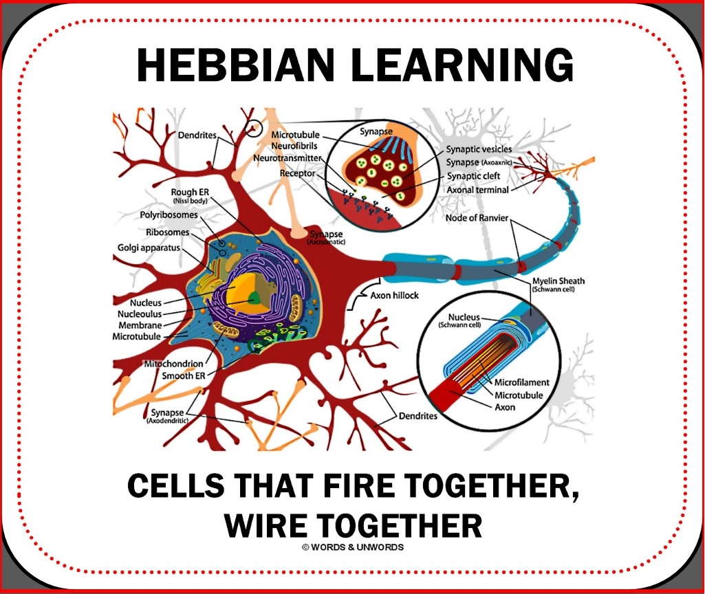 hebbian_learning_cells_fire_together_wire_together_mousepad-reee54a8492ff49ee872dee722a8edcbd_x7ef8_1024.jpg