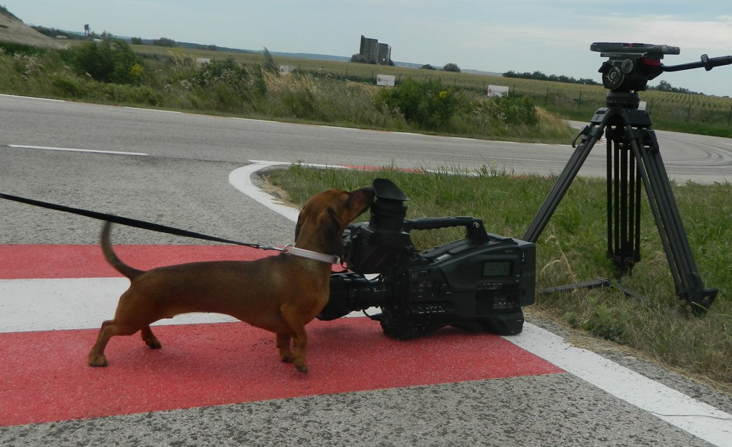 drivingcamp_camera02fb.jpg