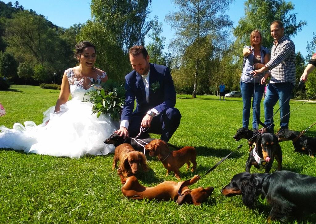 zoo_wedding-fun.jpg