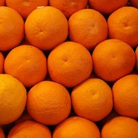 A hónap növénye: Citrus auraticum var. dulcis