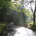 Park a kanyonban: Seifersdorfer Tal bei Dresden