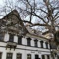 """Paripák, faragott verandák, ősfák: Mezőhegyes, a """"ménesváros"""""""
