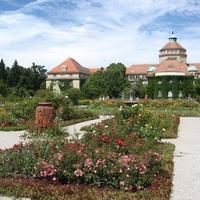 A rózsáktól a gyomokig: Neuer Botanischer Garten, München
