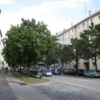A müncheni