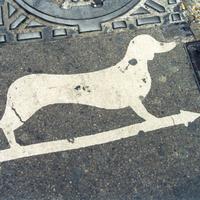 Funkcionális street art