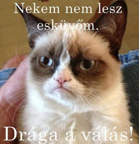 draga_a_valas_.jpg