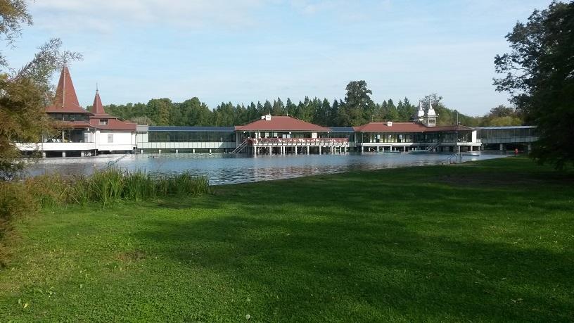hévizi tó.jpg