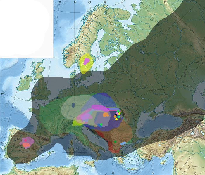 Trachytes areas.jpg