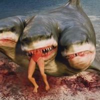 Háromfejű cápa támadása (2015) - 3 Headed Shark Attack