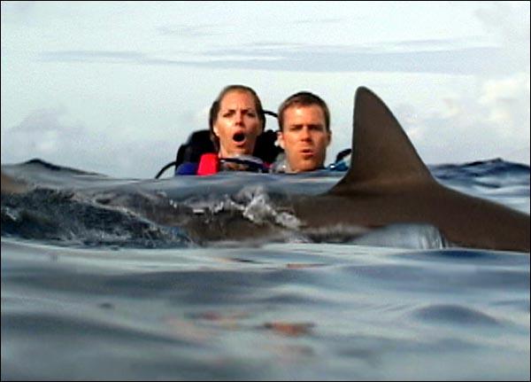 2003-openwater.jpg